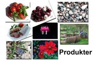 A14_produkter